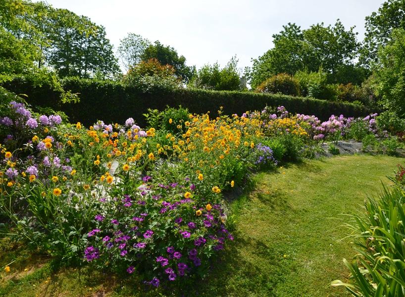 Jardin fleurs vivaces jaune capp paysages fouesnant 72dpi - Jardins d'ambiance