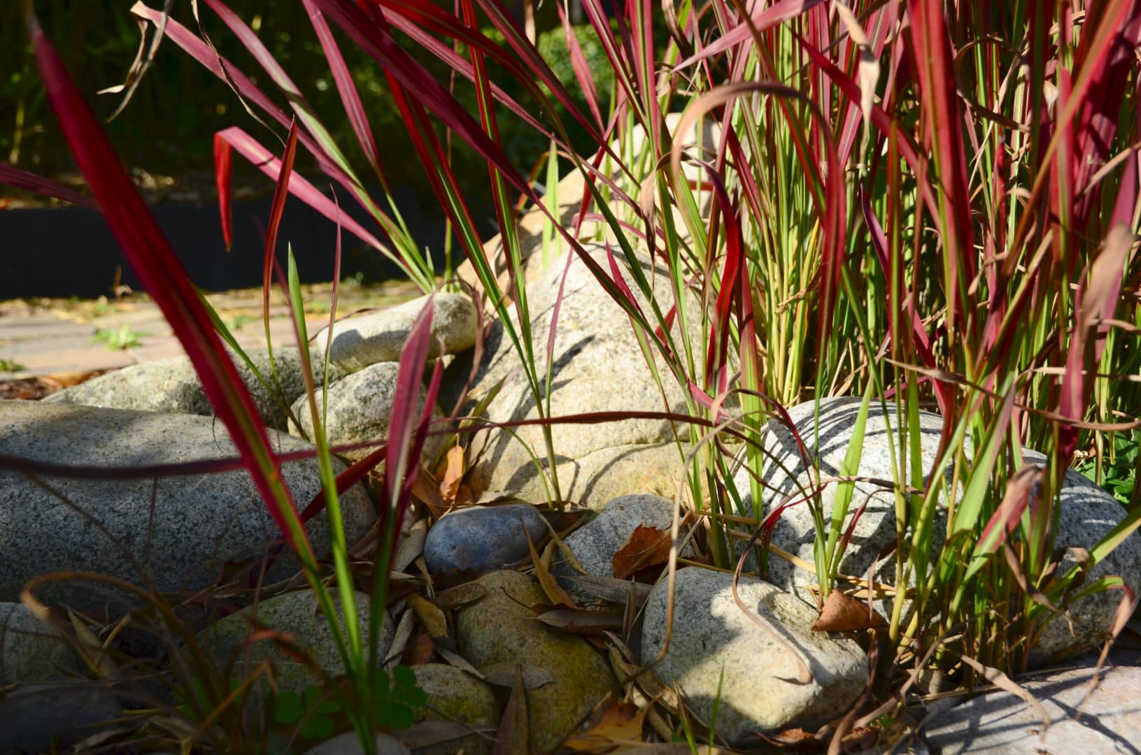Jardinier paysagiste entretien jardin Fouesnant Benodet 4 - Bureau d'études