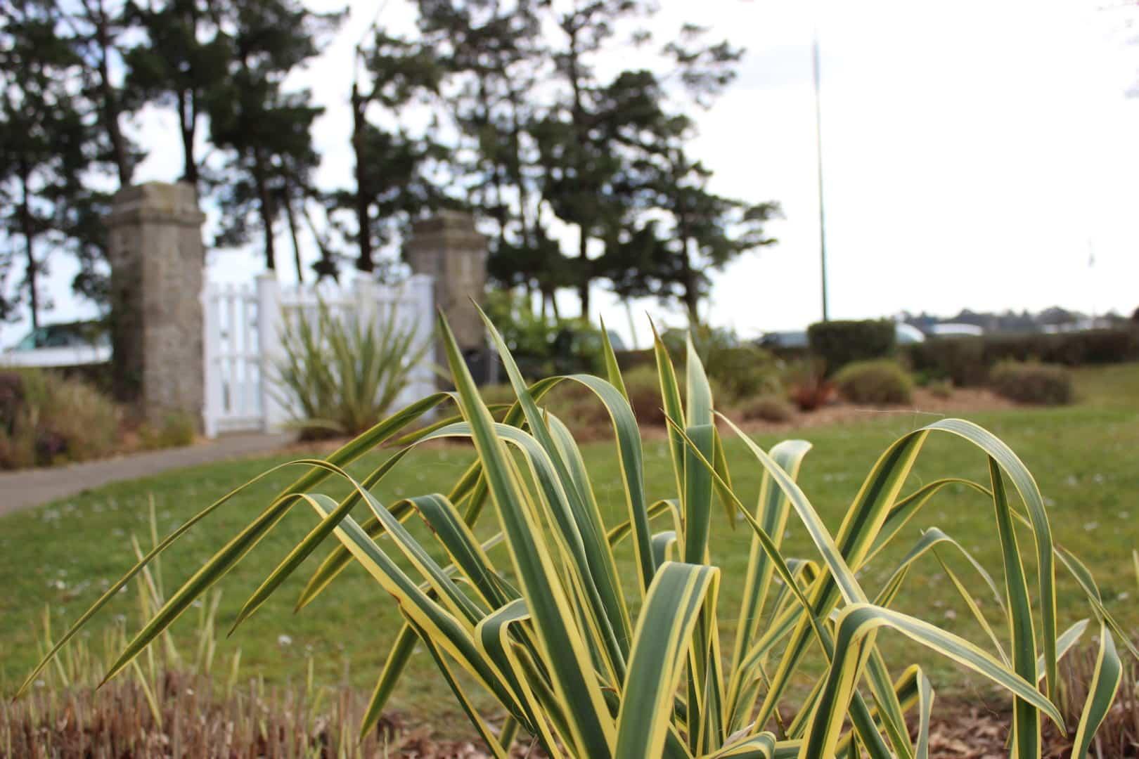 massif capp paysages capcoz entretien - Entretien de jardin